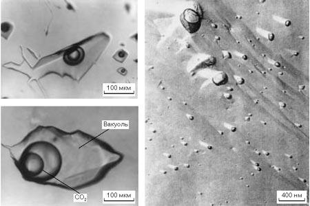 Рис. 3. Газо-жидкие включения в золотоносном кварце: слева - в кварце Березовского месторождения; справа - в кварце месторождения Сальсин, Франция (электронная фотография)